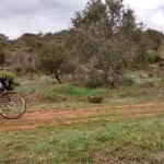 2015-04-19 btt burgos norte (100)