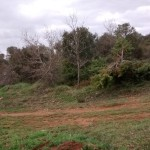 2015-04-19 btt burgos norte (189)