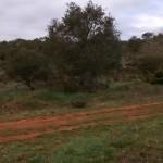 2015-04-19 btt burgos norte (62)