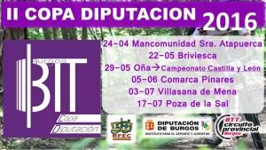 cartel copa diputación 2016
